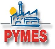 Las pymes suspenden en su presencia online